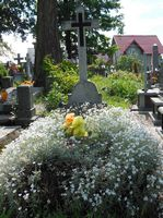 Very few graves use live flowers
